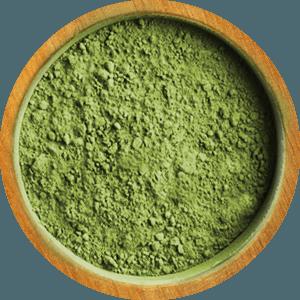 ingredient-cilantro2